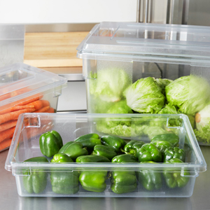 Clear Food/Tote Boxes for storing and serving food